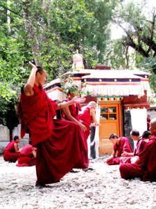 63138-monks-debate-0.jpg